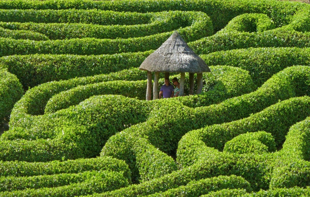 Picture of a maze with lots of green trees and a hut in the middle